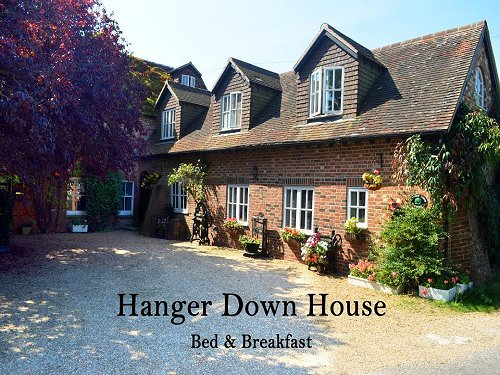 Hanger Down House Bed and Breakfast