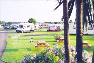 Newtown Cove Caravan and Camping Park