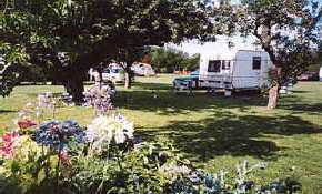 The Lillies Caravan Park
